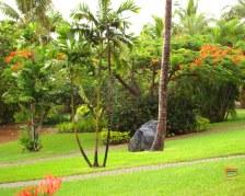 Uno dei giardini dell'Outrigger on the Lagoon - Sigatoka - Coral Coast - Fiji