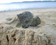Piccola roccia vulcanica a Natadola beach