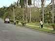 Iniziano i lavori di pulizia e ricostruzione a Lautoka dopo il ciclone Mick